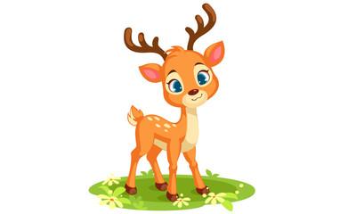Cute baby deer looking at front