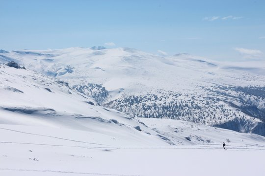 晴れた雪山と人 北海道(旭岳)
