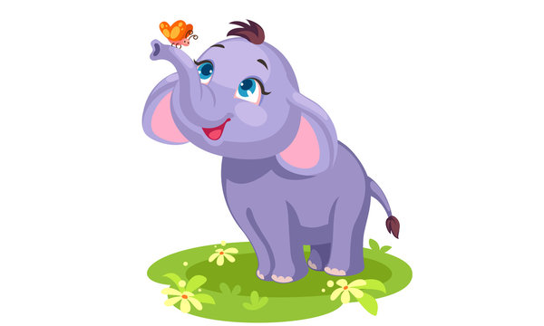 Cute baby elephant with butterfly