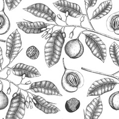 Vintage background with hand drawn nutmeg tree illustration. Vector hand drawn spice plant design. Engraved style seamless pattern  with aromatic and tonic elements.