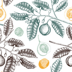 Seamless pattern with hand drawn spice tree sketch. Botanical illustration of nutmeg on white background. Vector background with aromatic and spicy elements.