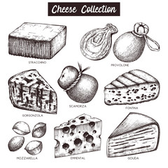 Vector collection of cheese sketches. Hand drawn food illustrations on white background. Vintage ingredients set.