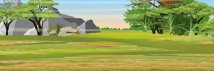 African savannah. Bush and mountains. Jungle with banana trees and tropical plants. Realistic vector landscape. The nature of africa