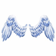 Hand drawn watercolor eagle wings isolated on white background.