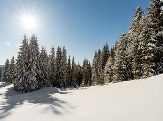 White winter sunny mountain landscape