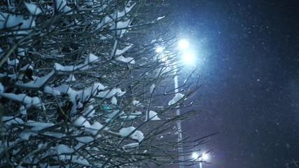 Fotobehang - Snow falling on night winter city street. Yekaterinburg, Russia. Slider shot
