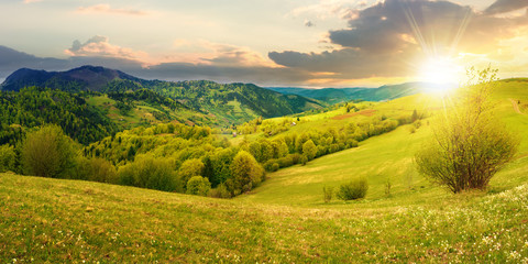 panorama of countryside in mountain at sunset. beautiful landscape in springtime
