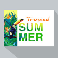Summer tropical backgrounds with tropical palm leaves, plants and with toucan.  Negative space trend.  Summer placard,  poster, flyer, banner invitation card.