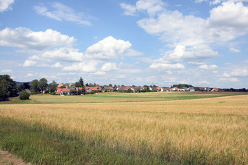 Wall Mural - Felder bei Weißenstadt