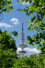Looking onto Hamburg's television tower against blue sky through green tree branches