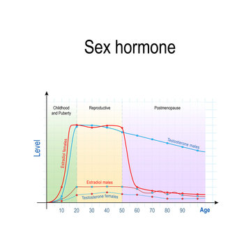 Sex hormones and ageing. Levels of Testosterone for males and females, and Estradiol for men and women