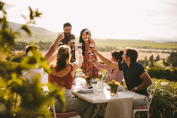 Group of people toasting wine during a dinner party Wall mural