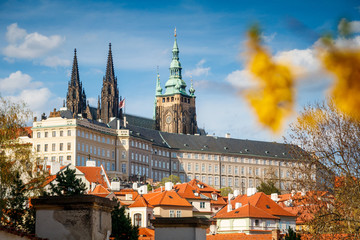 Spring view on Prague castle with blurred flower and roofs of old town houses