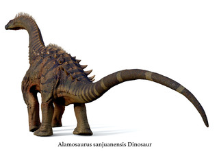 Alamosaurus Dinosaur Tail with Font - Alamosaurus was a titanosaur sauropod herbivorous dinosaur that lived in North America during the Cretaceous Period.