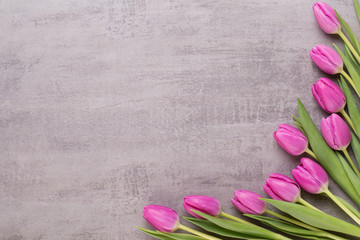 Spring greeting card, pink color tulips on the gray background.