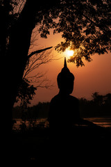 silhouette of Buddha statue under tree on river bank during sunrise
