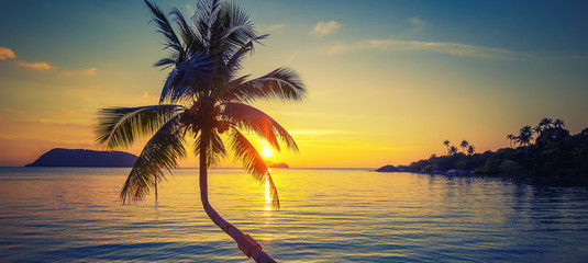 Fototapete - The silhouette of a coconut palm on the background of the sea and a stunning bright sunset, wallpaper, background and texture for advertising, panoramic banner format