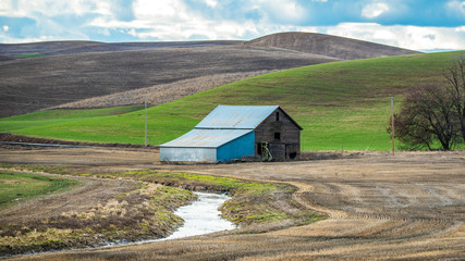 Barn in the fields of the Palouse in Washington State