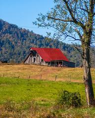 Barns Silos and Shacks of Virginia