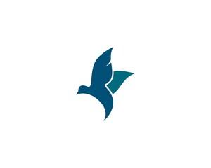 Seagull symbol illustration