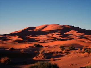 lunas del desierto
