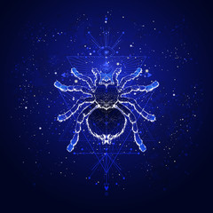 Vector illustration with hand drawn spider tarantula and Sacred geometric symbol against the starry sky. Abstract mystic sign. Linear shape.