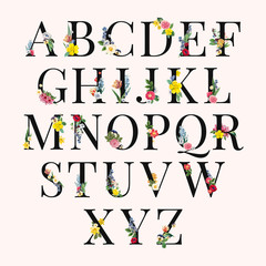 Alphabet floral background illustration