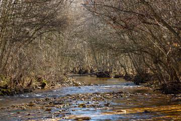Cauce del Río Duerna. Priaranza de la Valduerna, León, España.