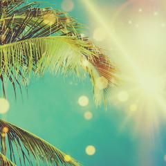 Coconut palm tree under blue sky. Vintage background. Retro toned poster.