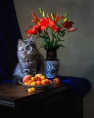 Still life with bouquet of  lily and funny kitty