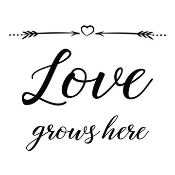Love grows here. Calligraphy saying for print. Vector Quote for typography and Social media post. Modern Inspiration Design