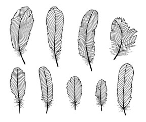 Set of hand draw feathers isolated on white background.