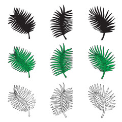 palm leaves in three variations on a white background