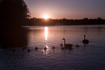 Abendstimmung am Heidesee in Bottrop