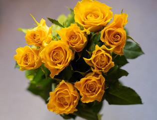 Obraz bukiet dziewięciu miodowych róż z góry - fototapety do salonu