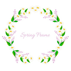 Spring frame with daisies