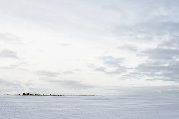 Foto op Aluminium Zee / Oceaan Panoramic view of the empty snow-covered country field at sunset. Evening clouds. Norway