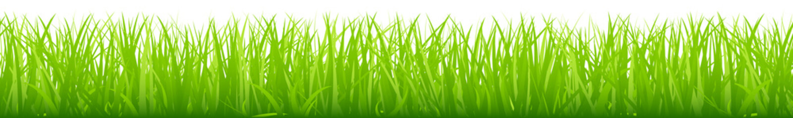 Big Straight Meadow Banner Green