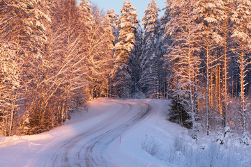 Snowy road winding through winter forest
