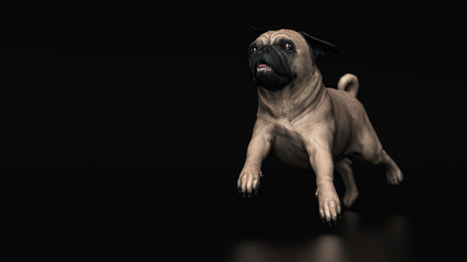 Cute pug dog running on stage looking to horizon 3d illustration