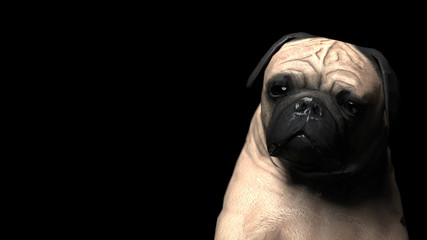 Sad and unhappy pug dog almost crying 3d illustration