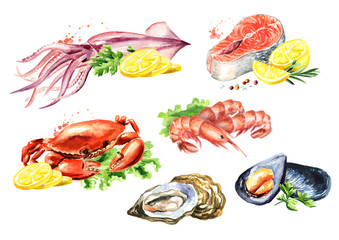 Seafood composition set with salmon, squid, crab, mussels, oysters, shrimp, lemon and greens, Watercolor hand drawn illustration isolated on white background