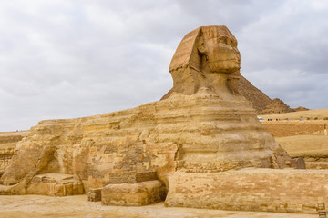 The great Sphinx in Giza plateau. Cairo, Egypt
