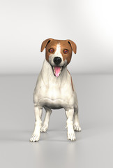 Jack russel dog breed standing with shocked expression on face 3d illustration