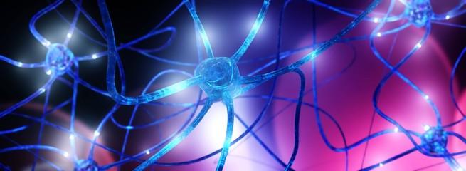 Neuron, neural network, brain activity, ganglion, nervous system