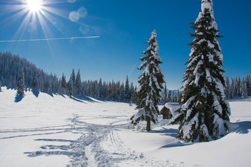 Winter mountain cottage