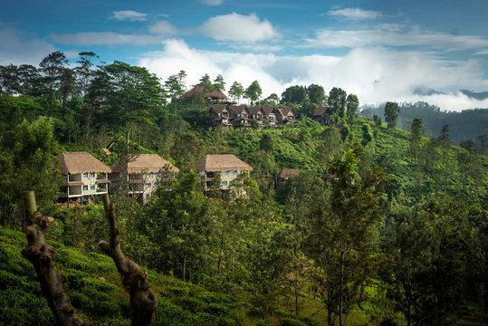 View from Little Adam's Peak. Mountain landscape in Sri Lanka,Little Adam's Peak Ella, Sri Lanka
