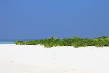 Desert island in Maldives (Ari Atoll)
