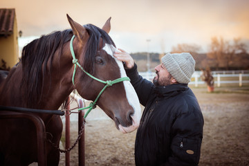 Man caressing a horse. Love for horses