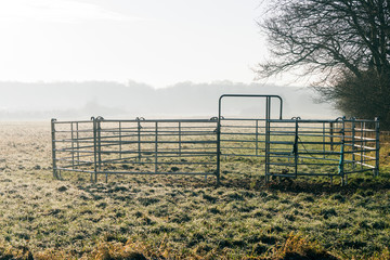 Small steel fence with open gate on a green meadow
